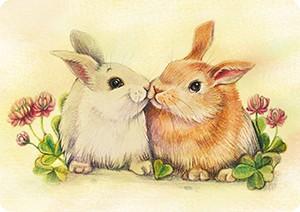 Кролики. Мини-открытка